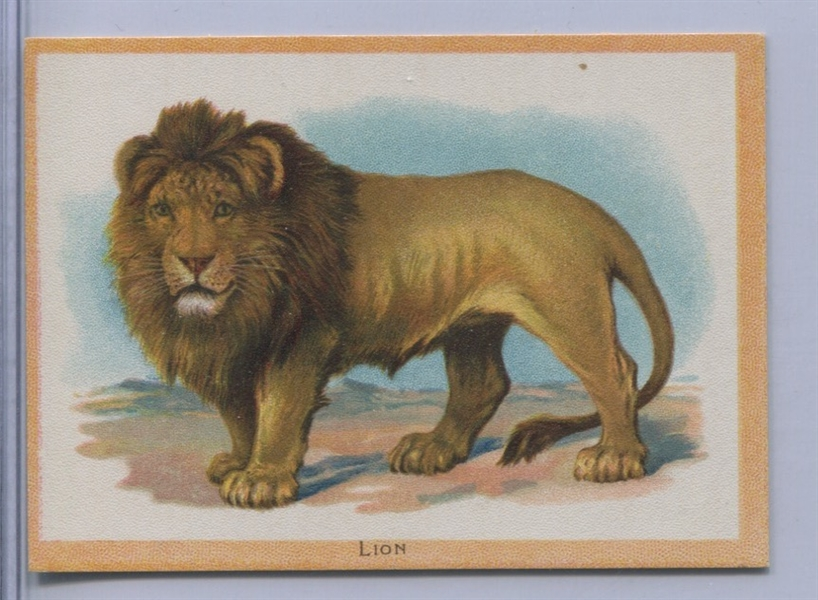 D15 Valley Milling Birds and Animals Card - Lion