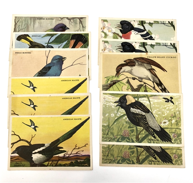 Kellogg's Cereal Bird Cards lot of (11) Cards