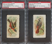 N23 Allen & Ginter Song Birds of the World Lot of (2) PSA5-Graded Cards