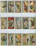 N13 Allen & Ginter Game Birds Lot of (20) Cards