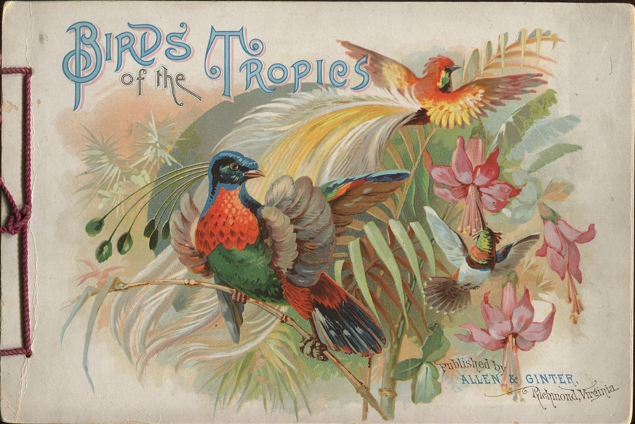 A4 Allen & Ginter Birds of the Tropics Album