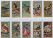 N4 Allen & Ginter Birds of America Near Set (33/50)