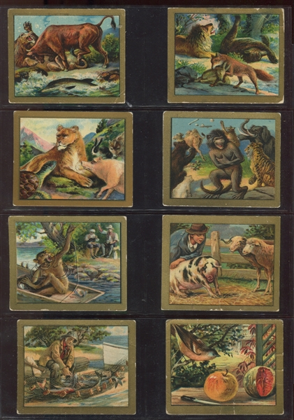 T57 Turkish Trophies Fable Series Complete Set of (100) Cards
