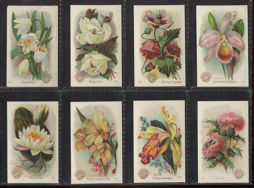 J16 Church & Dwight Beautiful Flowers Complete Set of (60) Cards