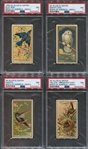N4 Allen & Ginter Birds of America Lot of (5) PSA7 and PSA6 cards